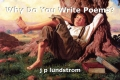 Why Do You Write Poems?
